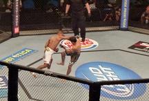 UFC & MMA Fighting