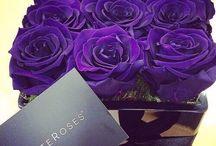 Roses éternel