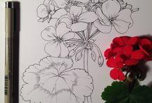 zeichnen Blumen