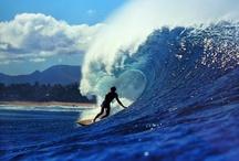 Surfing & Skateboarding