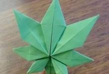 on weed / fotografías de artículos vinculados con la weed