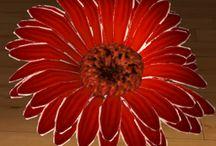 Gerbera / Gerbera należy do rodziny astrowatych. Liście dość długie, równowąskie, zazwyczaj jasnozielone, pokryte od spodu drobnymi włoskami. Kwiaty osadzone pojedynczo na długich, rurkowych pędach kwiatostanowych. Kwiaty wielobarwne, zazwyczaj koloru żółtego, czerwonego, pomarańczowego lub różowego. Cechą charakterystyczną gerbera jest fakt iż kwiaty otwierają się z rana i zamykają na noc.