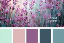 Wand- u. Farbgestaltung/Kombinationen