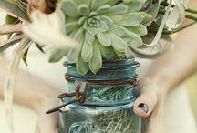 Gardens in a Jar