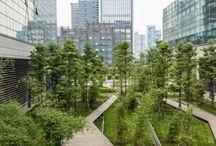 Ландшафтные идеи благоустройства пешеходной улицы