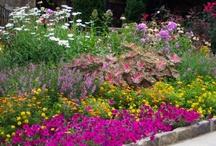 natural flowergarden