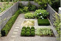 Garden | Landscape / Loved designing gardens when younger, love gardening! / by Tarnya Harper