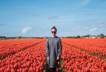 Travel | Netherlands