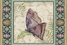 Motyle,owady