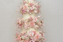 Best of cakes