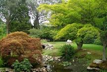 Gardens to Enjoy