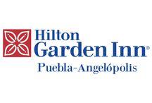 Hotel Hilton Garden Inn