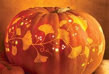 Pumpkins & Fall / by Diane Wood