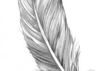 Angels Feathers