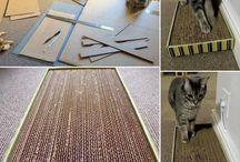 CATS DIY