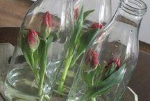 avskårne blomster