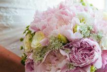 August: Maryland Weddings