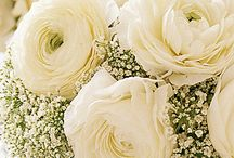 White Weddings / Simple, stunning and stylish - you can't go wrong with a completely white wedding. Inspiration for the floral elements can be found here.