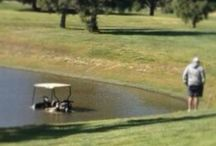 Golf fails / The lighter side of golf