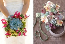 Succulent Wedding / by Katie Carroll