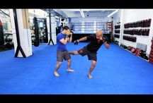 MMA UFC Freefight