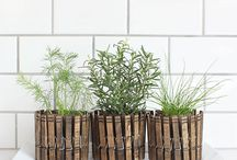 HOuse/gardening