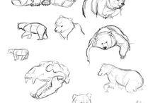 Hayvan Çizimleri