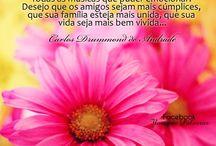 happy birthday / Saudando a vida.