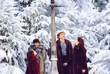 For Narnia!!! / This board is for Narnia lovers (like me). :D nothing inappropriate and please only pin things Narnia related ;)