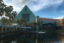 Walt Disney World Dolphin Hotel--A Discounted EPCOT Resort Option / The board gives a detailed review of the Walt Disney World Dolphin Hotel and shows you how to score a great deal at this EPCOT resort area wonder