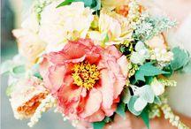 Wedding / by sarah renee