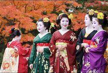 Japón / La naturaleza ha sido generosa con Japón. Desde paisajes nevados e interminables campos de lavanda en la isla norteña de Hokkaido, hasta idílicas playas de aguas turquesa en las islas subtropicales de Okinawa. Muchas son las imágenes que Japón inspira, pero éstas son algunas de las más famosas: escalar el volcánico Monte Fuji, los cerezos en flor en primavera o las tonalidades rojizas y ocres de los arces en otoño.
