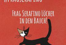 #fragserafino / Hier findest du alle Post zu #fragserafino. Serafino ist ROSINA's Lieblings-Kater. Er versucht viel Fragen zu euren Katzenlieblingen und zum Bio-Katzen-Futter zu beantworten.