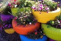 outdoor decorating / gardening