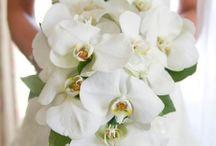 wedding bride bouquet