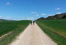 Camino de Santiago / Pilgrimage