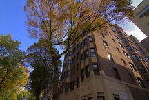 515 W. Briar, Chicago, IL 60657 / 515 West Briar is a vintage, elevator-equipped 9-story Lakeview Chicago apartment building. This charming building has a private garden, bicycle storage, offsite permit parking and an onsite laundry facility. Spacious apartments feature new bay windows for lots of natural light, large closets and ceiling fans.