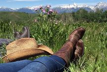 Ranch Vacations / Top dude ranch escapes where you can go Equitrekking and enjoy Western lifestyle.