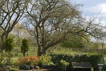 Cottages and Beautiful Gardens / Cottages and Cottage Gardens