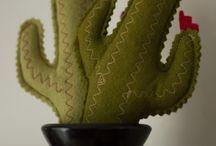 cacti & mountains