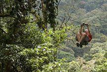 Costa Rica / by Michelle Joyce