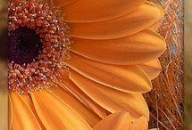 quilt flowers