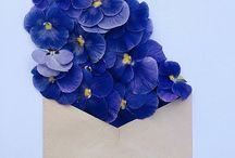flower envelope