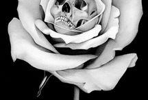 Pretty Skulls..