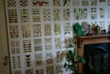 botanical book wallpaper