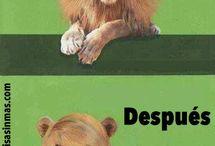 Preposiciones...Humor