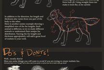 tutorial wolf