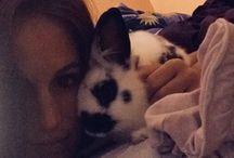 My bunny ❤️