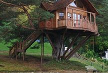 Tree Houses / by Samantha Clark