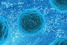 Stem Cell Innovations / Advanced topics on stem cell research and work towards disease treatment and cure.